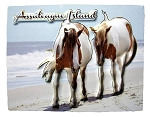 Assateague Island Virginia Highlight Fridge Magnet
