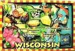 Wisconsin Cartoon Map Fridge Magnet
