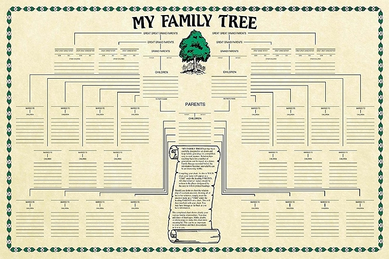 family tree genealogy chart design 1
