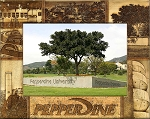 Pepperdine University Engraved Wood Picture Frame (5 x 7)