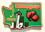 Washington Multi Color Fridge Magnet Design 18