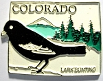 Colorado State Outline with Lark Bunting Fridge Magnet Design 1
