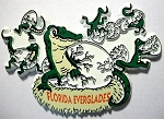 Florida Everglades with Gators Fridge Magnet Design 1
