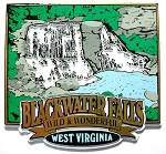 Blackwater Falls Wild and Wonderful West Virginia Fridge Magnet Design 25