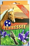 Tennessee Souvenir Playing Cards