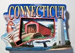 Connecticut Montage Artwood Magnet Design 27