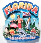 Florida Montage Artwood Magnet Design 16