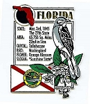 Florida The Sunshine State Montage Fridge Magnet
