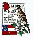 Georgia The Peach State Montage Fridge Magnet