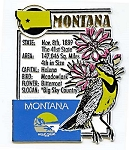 Montana The Big Sky State Montage Fridge Magnet