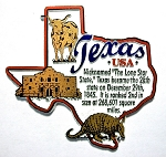 Texas Outline Montage Fridge Magnet Design 4