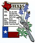 Texas Square Montage Fridge Magnet Design 5