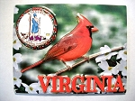 Virginia with State Seal Fridge Magnet Design 10