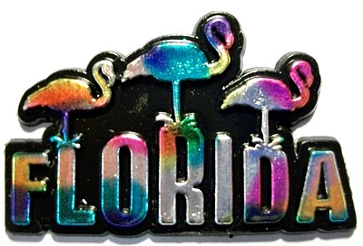 Florida with 3 Flamingos Multi Color Fridge Magnet Design 1