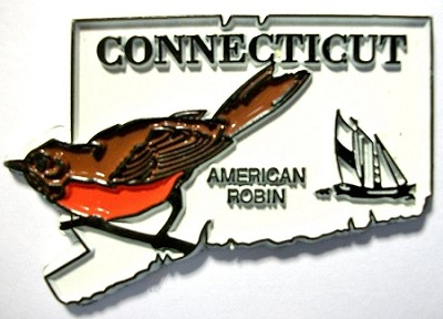 Connecticut State Outline with American Robin Fridge Magnet Design 1
