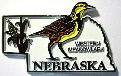 Nebraska State Outline with Western Meadowlark Fridge Magnet Design 1