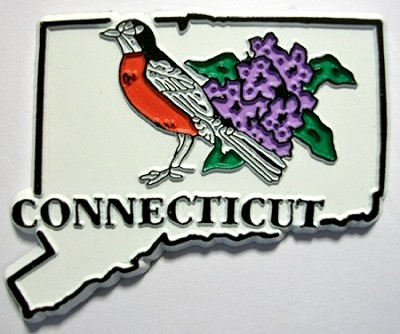 Connecticut State Outline with American Robin and Flowers Fridge Magnet Design 1
