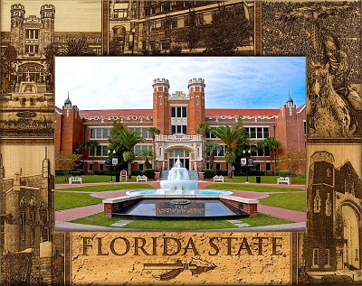 Florida State University Laser Engraved Wood Picture Frame (5 x 7)