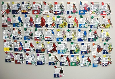 All 50 State Montage Magnets Plus Washington D.C.