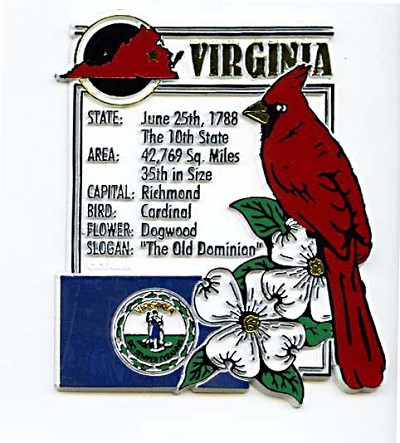 Virginia Square Montage Fridge Magnet Design 5