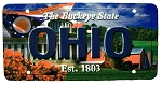 Ohio The Buckeye State License Plate Souvenir Fridge Magnet