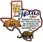 Texas the Lone Star State Outline Montage Fridge Magnet