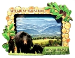 Allegheny Mountains West Virginia with Black Bear Artwood Fridge Magnet