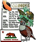 California The Golden State Montage Fridge Magnet