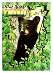 Blue Ridge Parkway North Carolina with Blackbear Artwood Fridge Magnet
