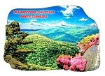 Grandfather Mountain North Carolina Artwood Fridge Magnet