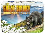 The Great Smoky Mountains with Black Bear and Valley Photo Fridge Magnet