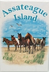 Assateague Island with Horses Fridge Magnet