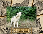 Yellowstone National Park With Wolves Laser Engraved Wood Picture Frame