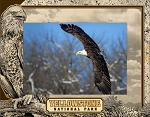 Yellowstone National Park With Bald Eagle Laser Engraved Wood Picture Frame