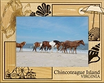 Chincoteague Island Virginia Laser Engraved Wood Picture Frame (5 x 7)
