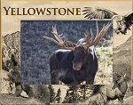 Yellowstone National Park Wildlife Laser Engraved Wood Picture Frame