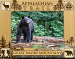 Appalachian Trail The Great Smoky Mountains Laser Engraved Wood Picture Frame