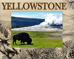 Yellowstone National Park Summer Scene with Moose Laser Engraved Wood Picture Frame