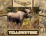 Yellowstone National Park Wildlife Collage Laser Engraved Wood Picture Frame