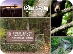 The Great Smoky Mountains Multi View Fridge Magnet