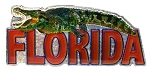 Florida with Gator Jumbo Artwood Foil Fridge Magnet