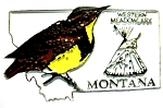 Montana State Outline with Western Meadowlark Fridge Magnet