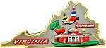 Virginia Multi Color Fridge Magnet