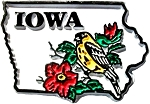 Iowa 5 Color State Outline United States Fridge Magnet