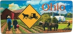 Amish Country Ohio 3D Fridge Magnet