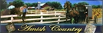Amish Country with Horse and Buggy Fridge Magnet