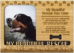 My Beautiful Rescue Has Gone Engraved Wood Picture Frame Magnet