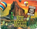 New Mexico 3D Fridge Magnet