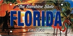 Florida The Sunshine State License Plate Souvenir Fridge Magnet
