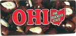 Ohio The Buckeye State 3D Fridge Magnet